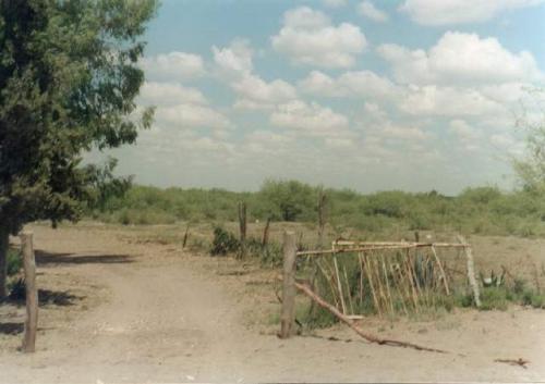 Desierto de La Paz